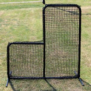 Professional Baseball Protective Screens