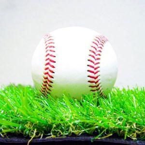 Indoor Baseball Turf